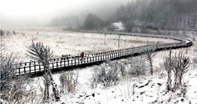 Abant'a mevsimin ilk karı yağdı