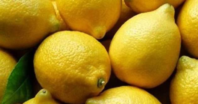 Limon fiyatında şok düşüş