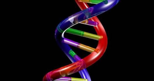 Parkinsona neden olan gen bulundu