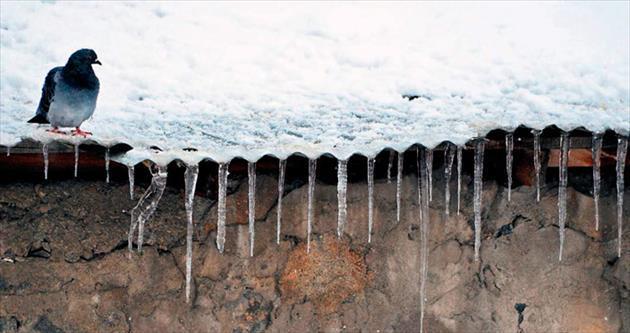 Türkiye'nin yarısı karla kaplandı