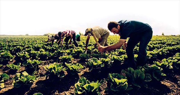 Şekerbank'tan arazi birleşmesine destek