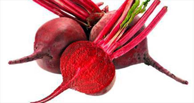 Şeker pancarından bitkisel kan üretimi
