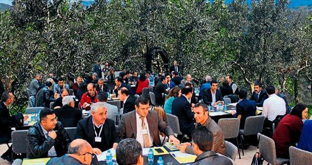 Gaziantep'te zeytin buluşması