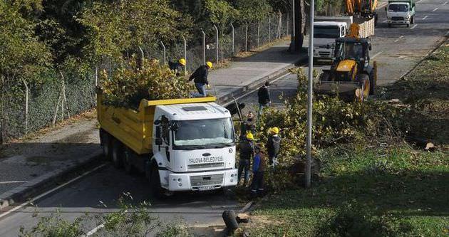 Kesilen ağaçlar fakirlere dağıtılacak