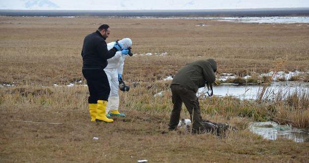 Yüksekova'da kan donduran cinayet