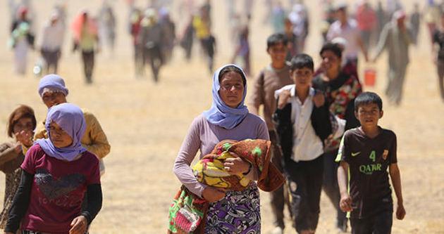 IŞİD, bin 500 Yezidi çocuğu kaçırdı