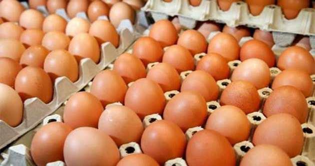 Yumurta yemek için 4 akıllı neden