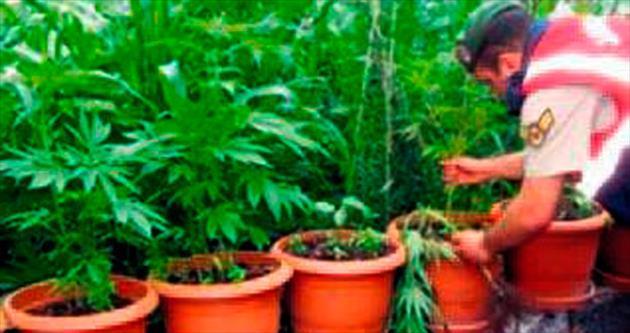 Yargıtay'dan evde uyuşturucuya beraat