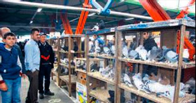 Güvercin pazarı büyük ilgi gördü