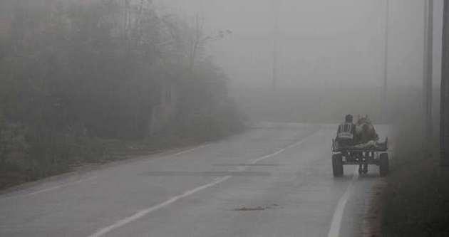 Edirne'de ulaşıma sis engeli