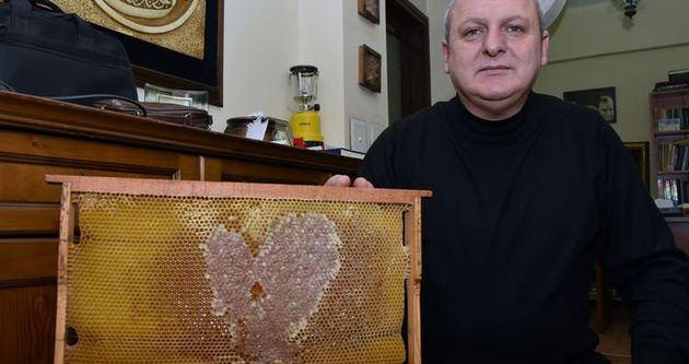 Arılar aşka geldi