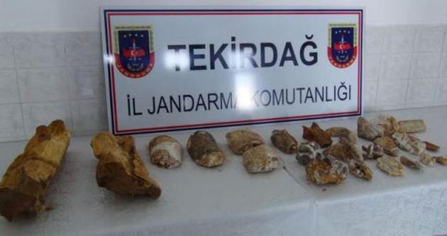 Tekirdağ'da fosilleşmiş dinozor kemiği bulundu