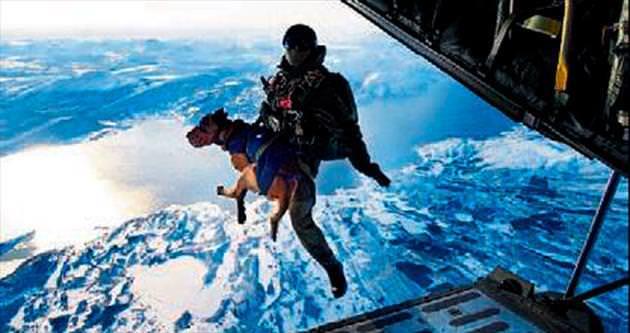 Üç bin metreden köpekli atlayış