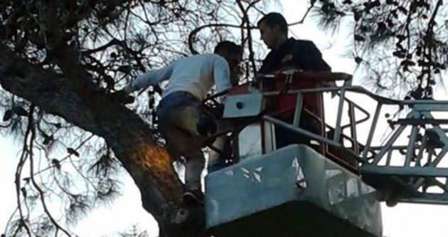 Ağaçta kalan futbolcuyu itfaiye indirdi