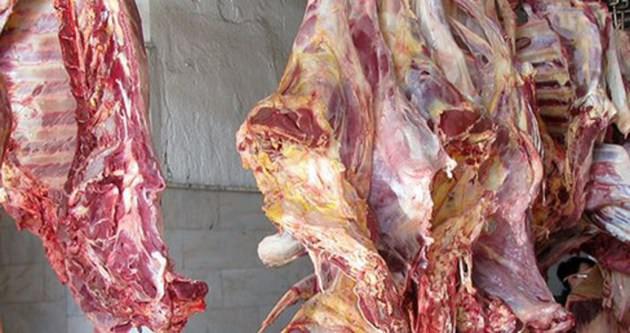 Mersin'de 21 ton kaçak et yakalandı