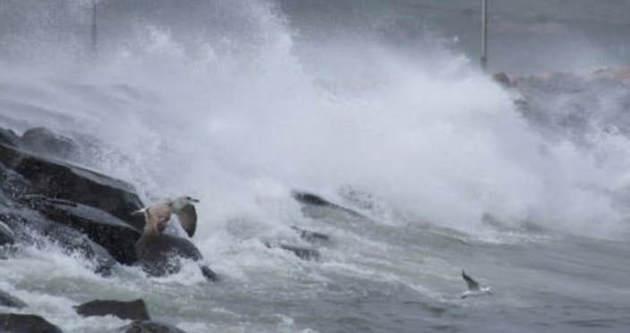 İstanbul'da fırtına bir kadını yuttu