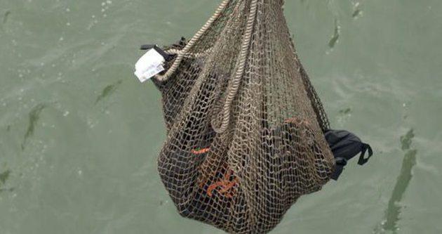 Düşen uçağın yolcuları denizden ağlarla toplanıyor