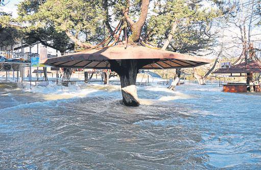 Manavgat Irmağı yine taştı