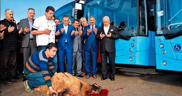 Mersin Büyükşehir 100 otobüsle güçlendi