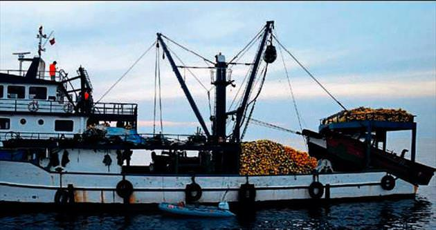 Deniz teröristlerine 674 bin lira ceza kesildi