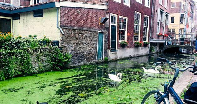 Hollanda'nın huzurlu köşesi Delft