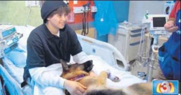 İmdadına terapi köpekleri yetişti