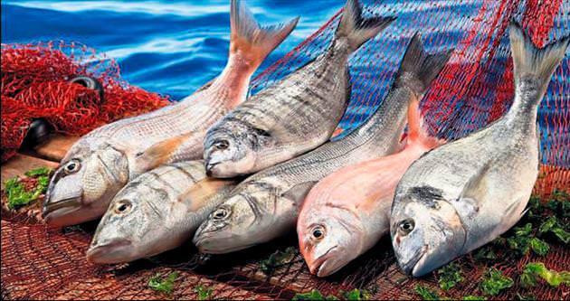 Su ürünleri ihracatta zirveye abone oldu