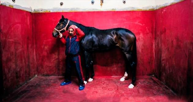 Milyonluk yarış atları Onlara emanet