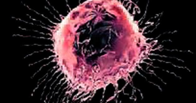 Göğüs kanseri tedavisi için kilit gen bulundu