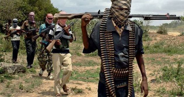 Afrika'nın IŞİD'i Boko Haram