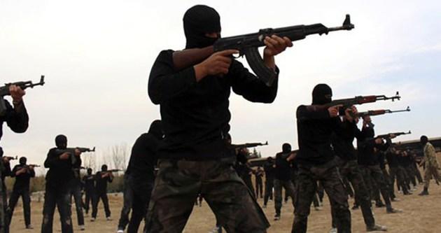 IŞİD'le mücadeleye İsveç'den destek