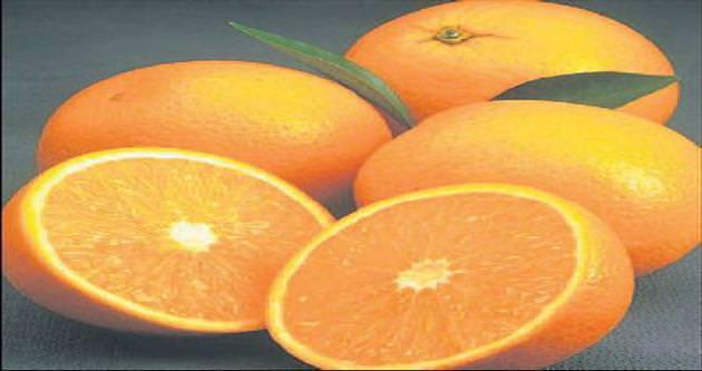 Portakal fiyatı üreticiyi üzdü