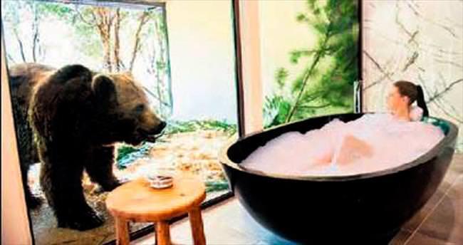 Hayvanat bahçesi içinde otel açılınca...