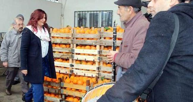 CHP'li belediye 52 ton portakalı ihtiyaç sahiplerine dağıtacak