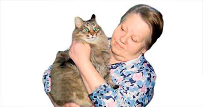 Sokak kedisi, bebeği donmaktan kurtardı