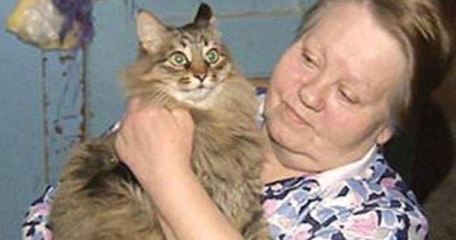 Sokağa terkedilen bebeği kedi kurtardı