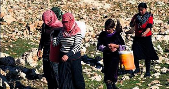 IŞİD 250 Yezidi'yi serbest bıraktı