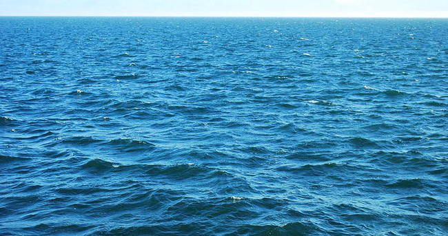 Denizli'de 2 kesik baş bulundu
