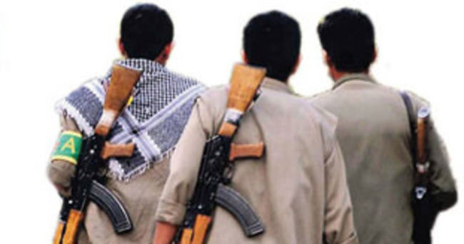 Şırnak'ta 12 terörist teslim oldu