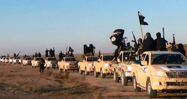 Kobani'de yenilen DEAŞ  Şengal'e yöneldi
