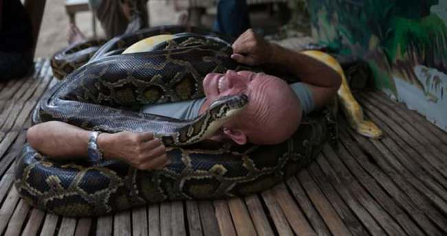 Masaj için ölümcül yılanlara sarılıyorlar!