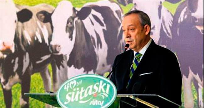 Sütaş, beş yılda süte 300 milyon $ yatıracak
