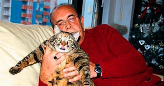 Obez kedi Şila tedavi altına alındı