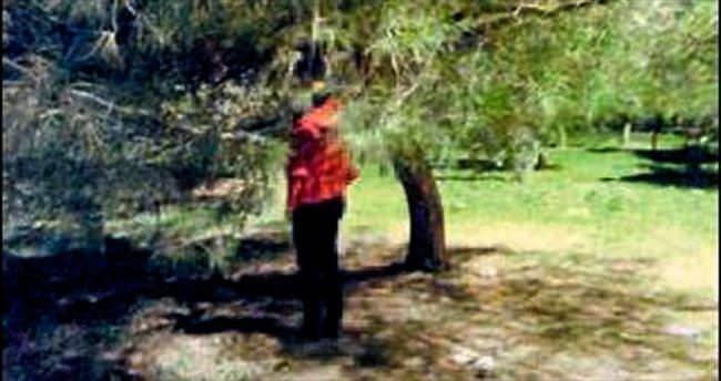 Kendini ağaca asıp, canına kıydı
