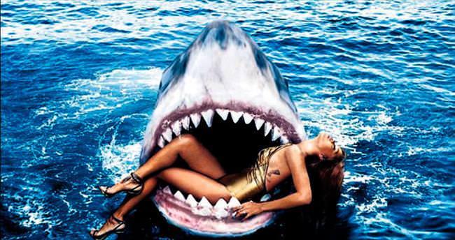 Köpekbalıklarıyla yan yana yüzdü