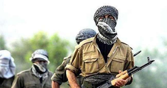2 PKK'lı teslim oldu