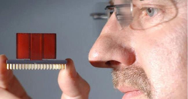 Çayın kalitesini elektronik burun belirleyecek