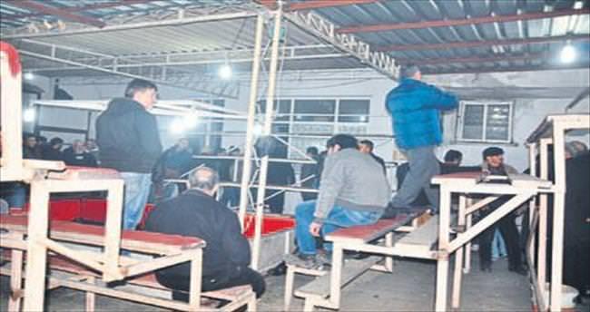 Horoz dövüştüren 68 kişiye para cezası