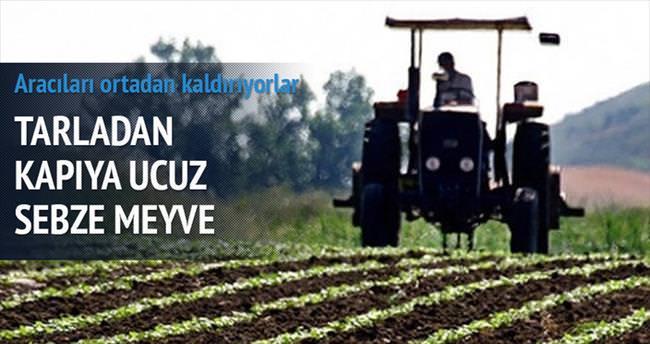 Çiftçi rafa kafa tuttu