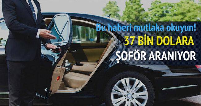 37 bin dolar maaşa şoför arıyor!